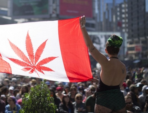 Guns & Drugs: Canada's Marijuana Legalization
